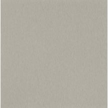 PPSM Design 1 Brushed Metal F8766 MAT matte 58 qualité standard pel 280x207cm 19mm