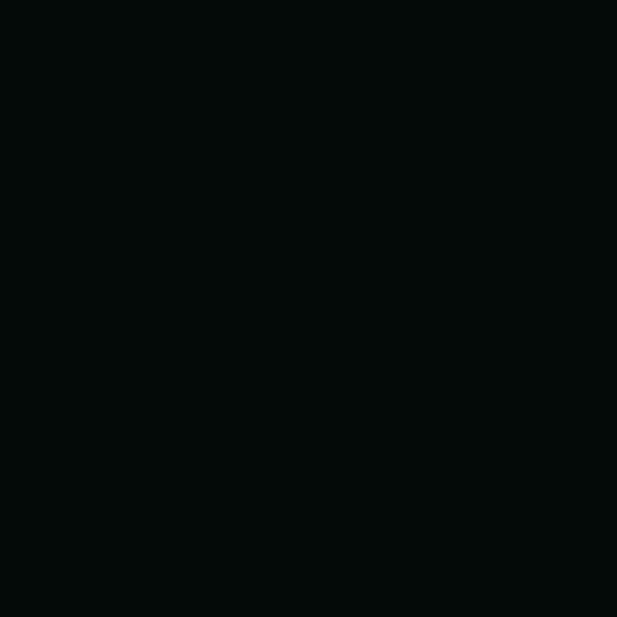 Panneau Melamine Noir Mat ppsm eurodekor noir u999 st2 qualité standard pel 280x207cm 19mm